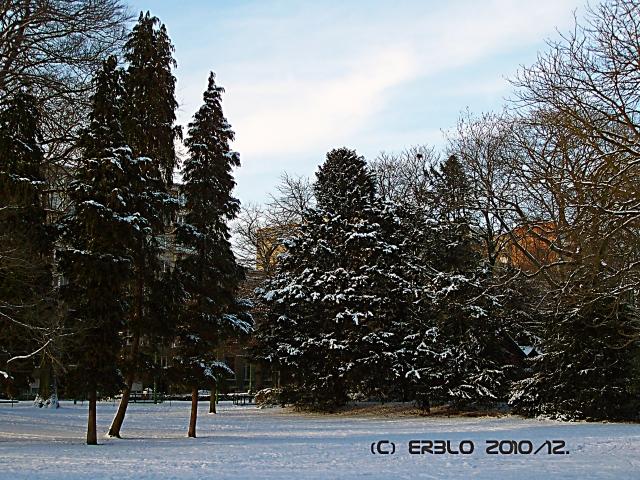 winterscene.jpg
