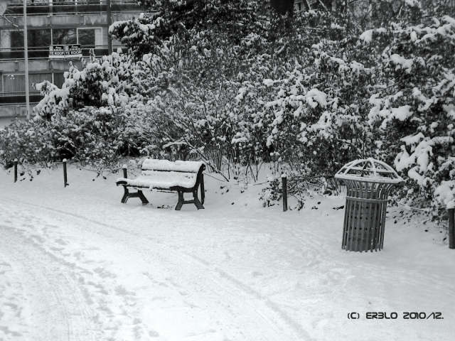 snowcorner.jpg